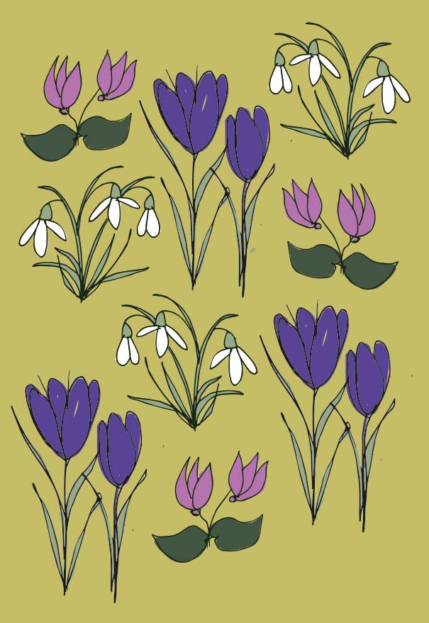Bee friendly spring flowers